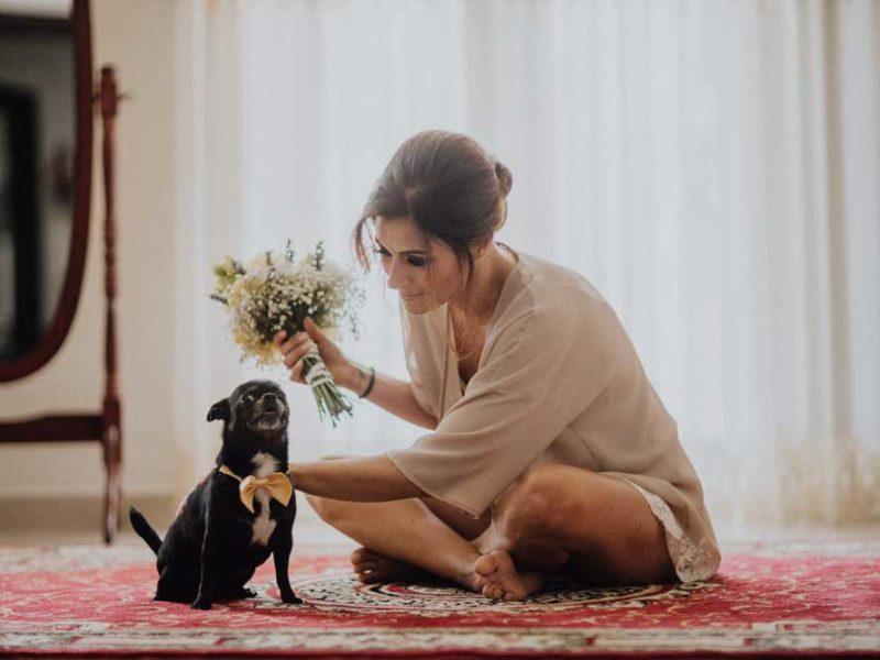 wedding in puglia angelo e celeste sposa e cane
